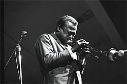 RAY AVERY - Miles Davis at the 1963 Monterey Jazz Festival.