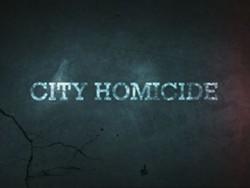 city_homicide_logo.jpg