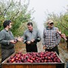 At Devoto Cider, the Apple Doesn't Fall Far From the Tree