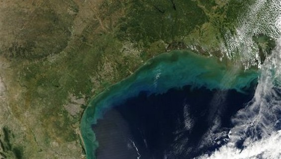 Nitrogen-filled sediment flowing from the Mississippi into the Gulf, as seen from space. - AP NEWS/NASA