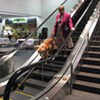 SPCA Warns of Local Pups Getting Paws Stuck in BART Escalators