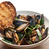Fresh Eats: Nopa's Mussels with Harissa Leave Us Shell Shocked