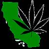 Wait Until 2014: Marijuana Legalization All but Dead in California
