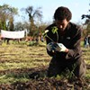 Occupy the Farm: Police Arrest Sleeping Protesters