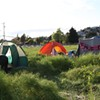 Occupy the Farm: UC Sues, Hopes Courts Will Evict Protesters