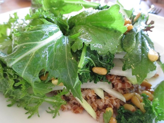 Piccino's Farro Salad with Green Bor Kale, Kohlrabi, and a Pine Nut and Mint Gremolata. Definitely Not Just Yoga Cuisine. - TREVOR FELCH