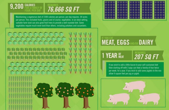 Portion of One Block Off the Grid's Infographic