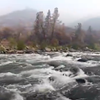 Rim Fire Recovery Campaign Launched to Help Restore the Tuolumne River Watershed