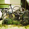 Preventing Bicycle Theft: Tips Every Cyclist Should Know