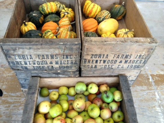 Produce is arranged in attractive, rustic boxes. - ANNA ROTH