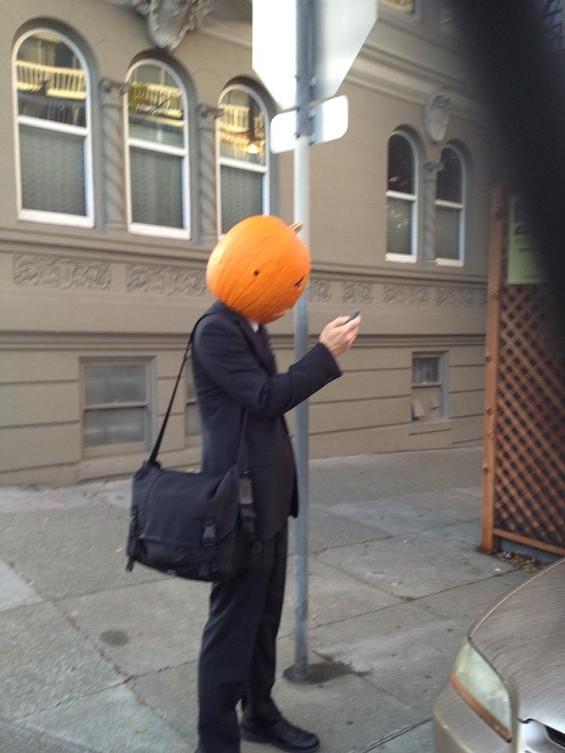 Pumpkin head closes an important work deal via text this morning - REBECCA BOARDMAN