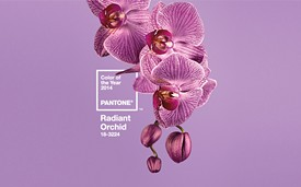 Radiant Orchid - PANTONE.COM