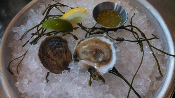 Rocky Nook oysters from Waterbar - PHOTO COURTESY OF WATERBAR