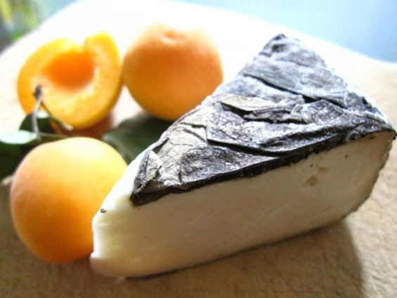 Sally Jackson's amazing cheese, now lost to the world after an FDA crackdown. - MADAME FROMAGE/FLICKR