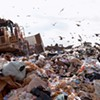 Schrodinger's Dump: A Jury Verdict Reveals That Garbage Can Be Simultaneously in and Not in a Landfill