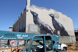 PHOTOGRAPH BY CAMILA BERNAL - Scientific fact: Giant seals are endangered by condo encroachment.