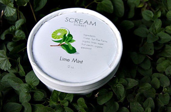 Scream Sorbet in a garden of mint. - BEN NARASIN