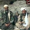 Senate Foreign Relations Committee Report Confirms: SF Weekly Found Bin Laden in October 2001