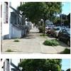 Sidewalk Landscaping This Weekend: Get Some Sun, Freak