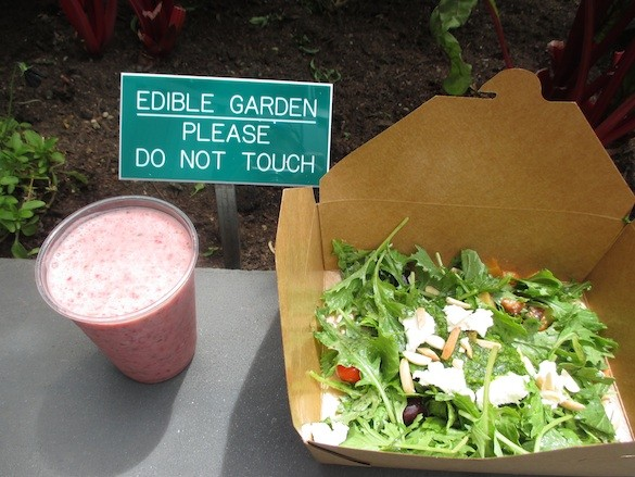 The Giants' strawberry-basil smoothie and salad bar at the new edible garden. - TREVOR FELCH