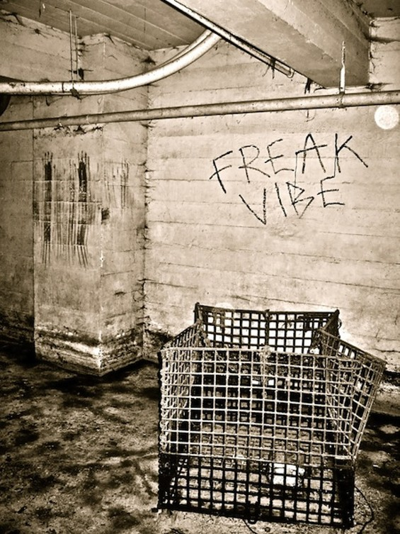 freak_vibe_cover_art.jpg
