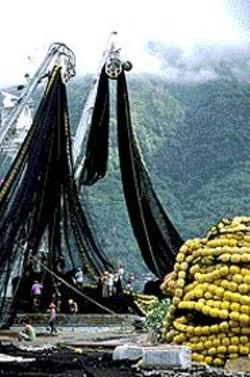 Steve Cowan's Farming the Seas.