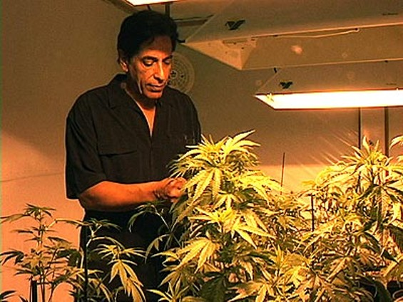Steve Kubby, would-be freer of marijuana