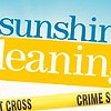 <i>Sunshine Cleaning</i>