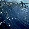 <i>Surfwise</i>