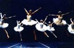 LESLEY  LESLIE-SPINKS - Swedish choreographer Mats Ek shakes things up - with the Cullberg Ballet's gender-bending twist on - Swan Lake.