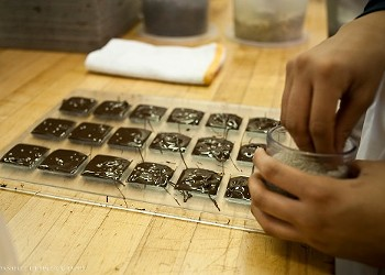 Sweet Talk: Business Tips from the Bay Area's Best Chocolatiers