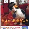 Japanese Railway's Cat Mascot Brings in Millions. We've Got Railways. We've Got Cats. Why Not Here?