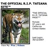 Tatiana The Tiger On MySpace: Don't Look So Shocked