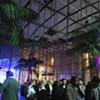 The Academy of Sciences' Nightlife Series Is a Worthy Club Alternative