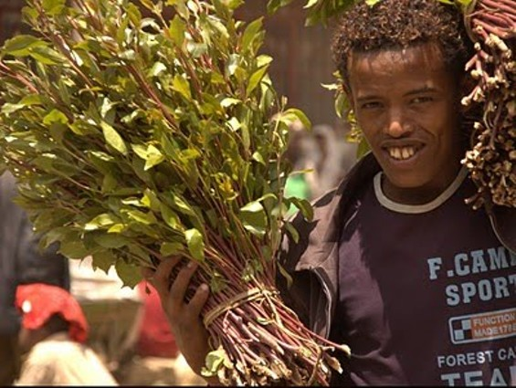 The khat-man - WWW.ELCIUDADANO.CL
