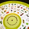 The Local Foods Wheel Keeps You in Season