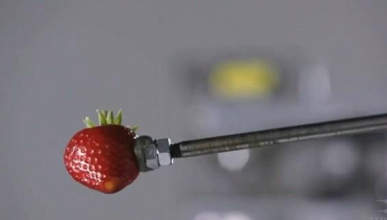 food_video_strawberry.jpg