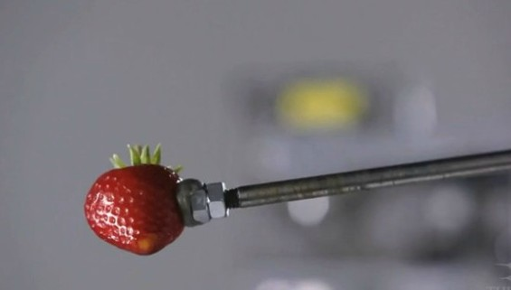 food_video_strawberry.jpg