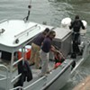 Military Dolphins, Sea Lions Save San Francisco From Terror