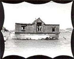 BILL  DANIEL - The secret life of Richardson Bay.
