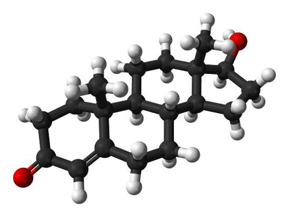 The testosterone molecule - BENJAH-BMM27