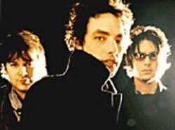 The Wallflowers.