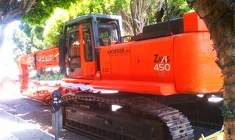This massive Zaxis 450 LC may soon be ripping apart the Pagoda Palace - JOE ESKENAZI