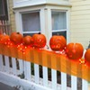 Those Bitchy-Looking Pumpkins in Bernal Heights Are Back