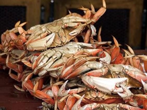 dungeness_crabs.jpg
