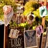 Tiny Splendor: Bringing Prints to the People