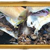Fresh Eats: Toast Deli's Sisig Surprise Is One (Good) Hot Mess