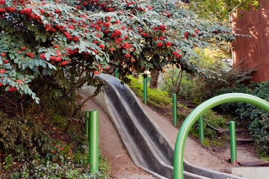 Slide into childhood bliss! - JUAN DE ANDA/ SF WEEKLY
