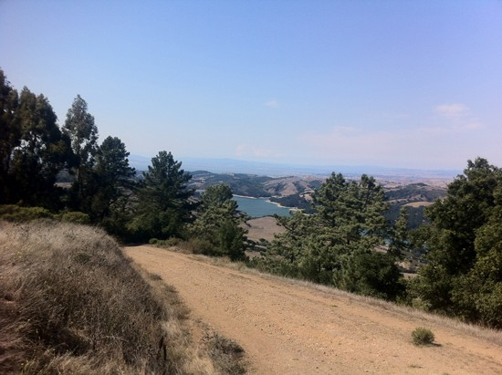 Trails in Tilden Regional Park with San Pablo Reservoir in the background