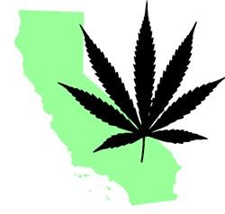 california_marijuana_template.jpg